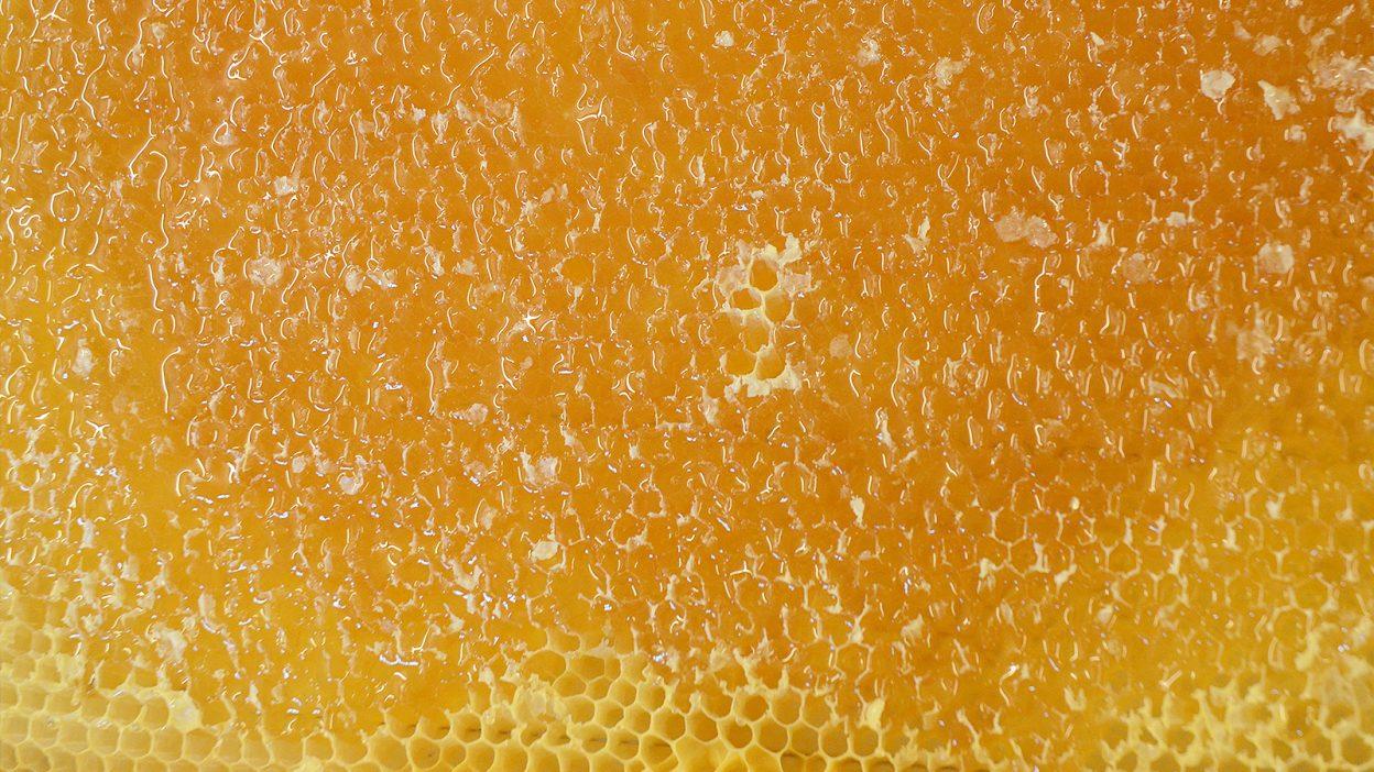 Honigwarben